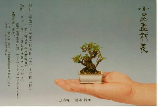 011-5hagaki-webujpg.jpg