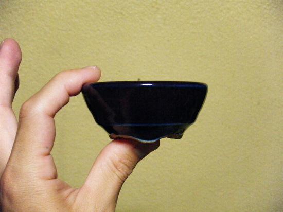 2009_0919_000829-DSCF7313.JPG