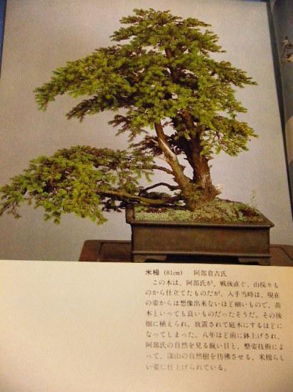 2011_0421_023110-DSCF2217.JPG