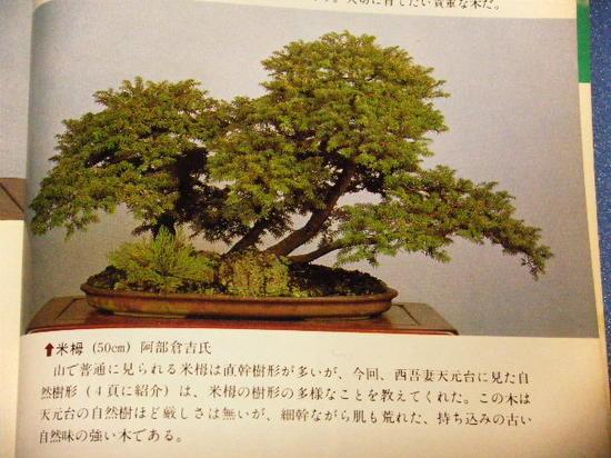2011_0421_023159-DSCF2218.JPG