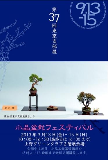 2013Shibuten.jpg