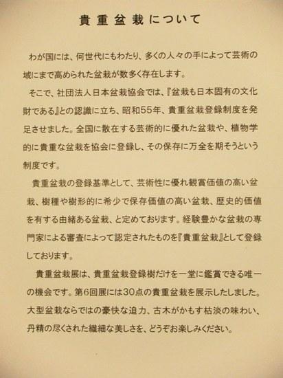 2010_1204_154617-DSCF6086.JPG
