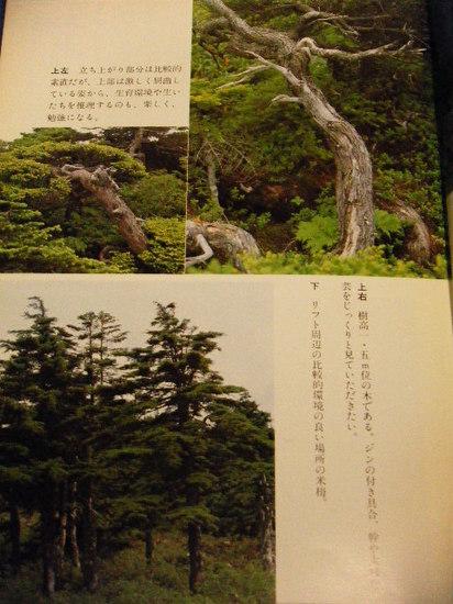 2011_0421_023319-DSCF2220.JPG