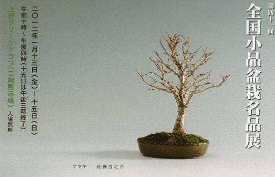 第41回全国小品盆栽名品展表H24.jpg