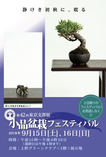designJ.jpg
